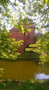 Zamek w Oporowie, za drzewami